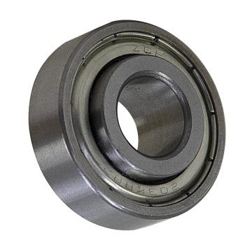 High Temperature Deep Groove Bearing 6204-2z/Va201 for Tunnel Furnace